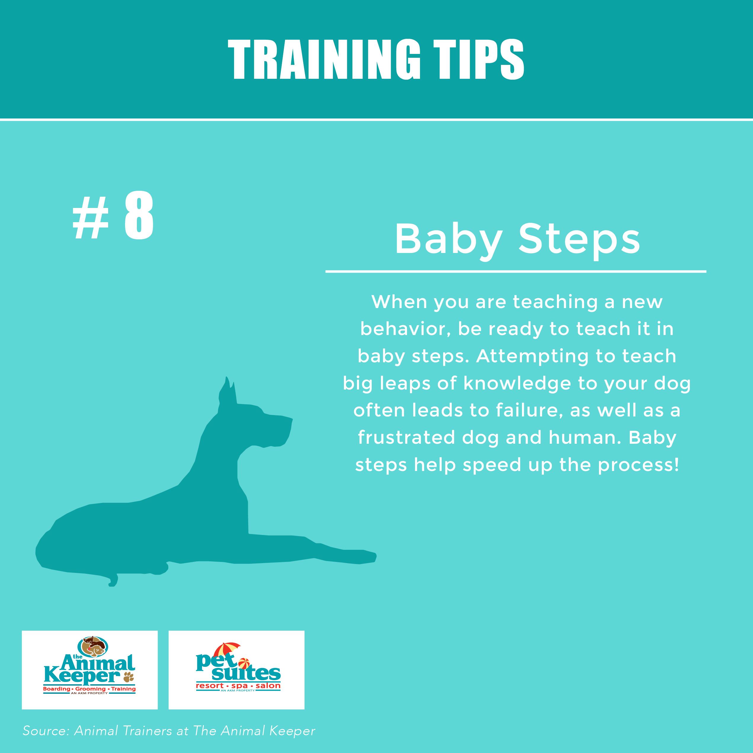 Training Tip 8 Baby Steps Pet Suites